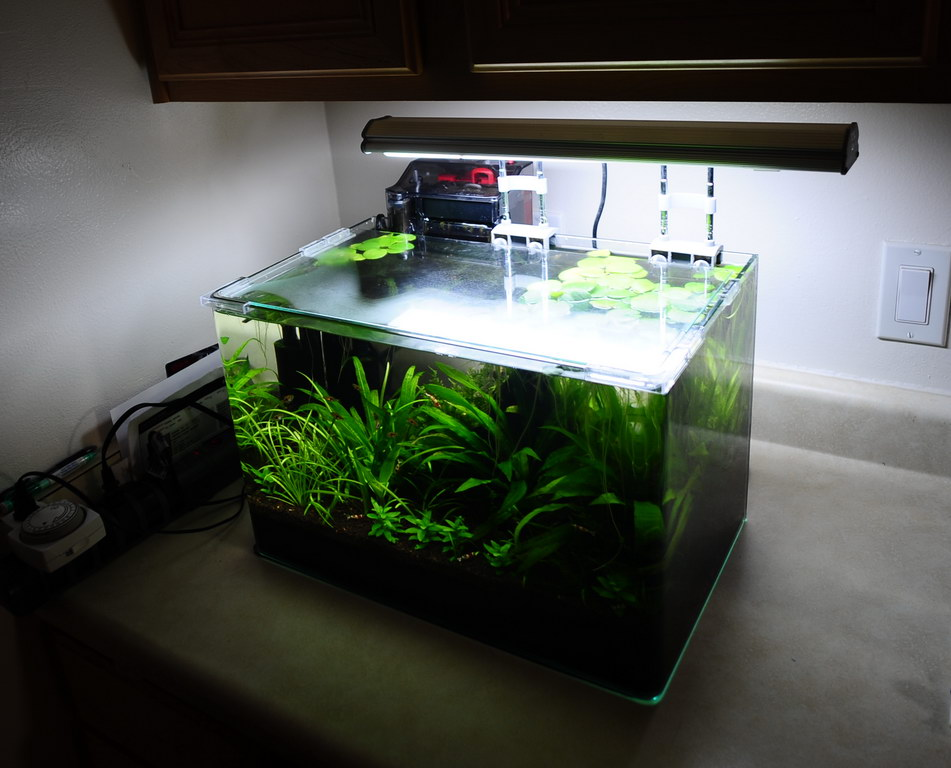 Stop tank top condensation the planted tank forum for Fish tank top cover